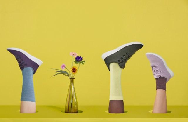 Allbirds' new socks collection.