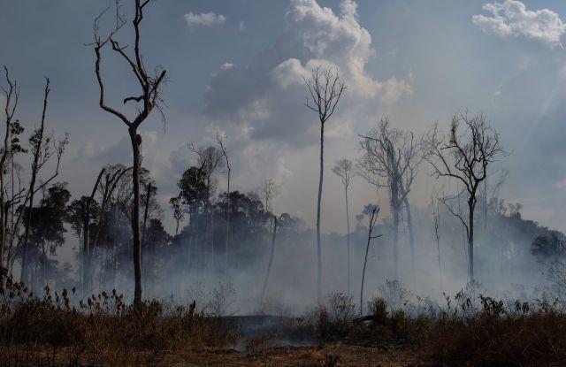 Amazon fires in Novo Progresso, Brazil.