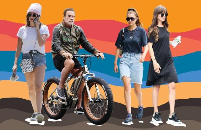 Ashley Tisdale, Arnold Schwarzenegger, Gigi Hadid, and Dakota Johnson.