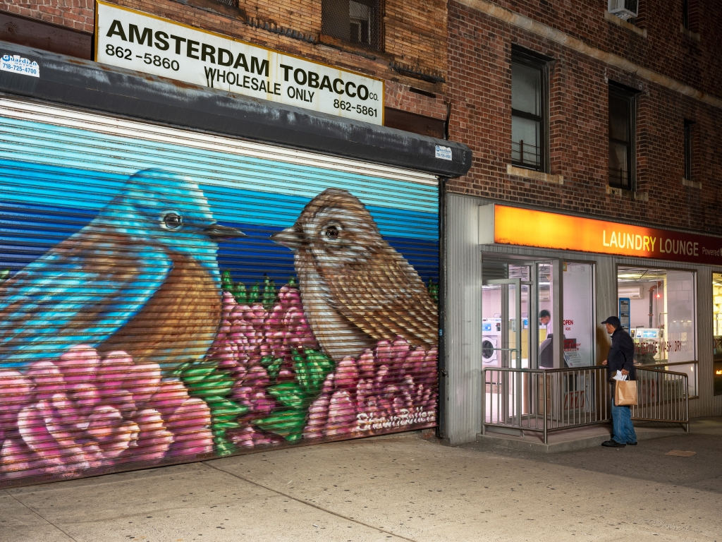 A mural featured in Gail Albert Halaban's exhibition of the Audubon Mural Project at Aperture Gallery