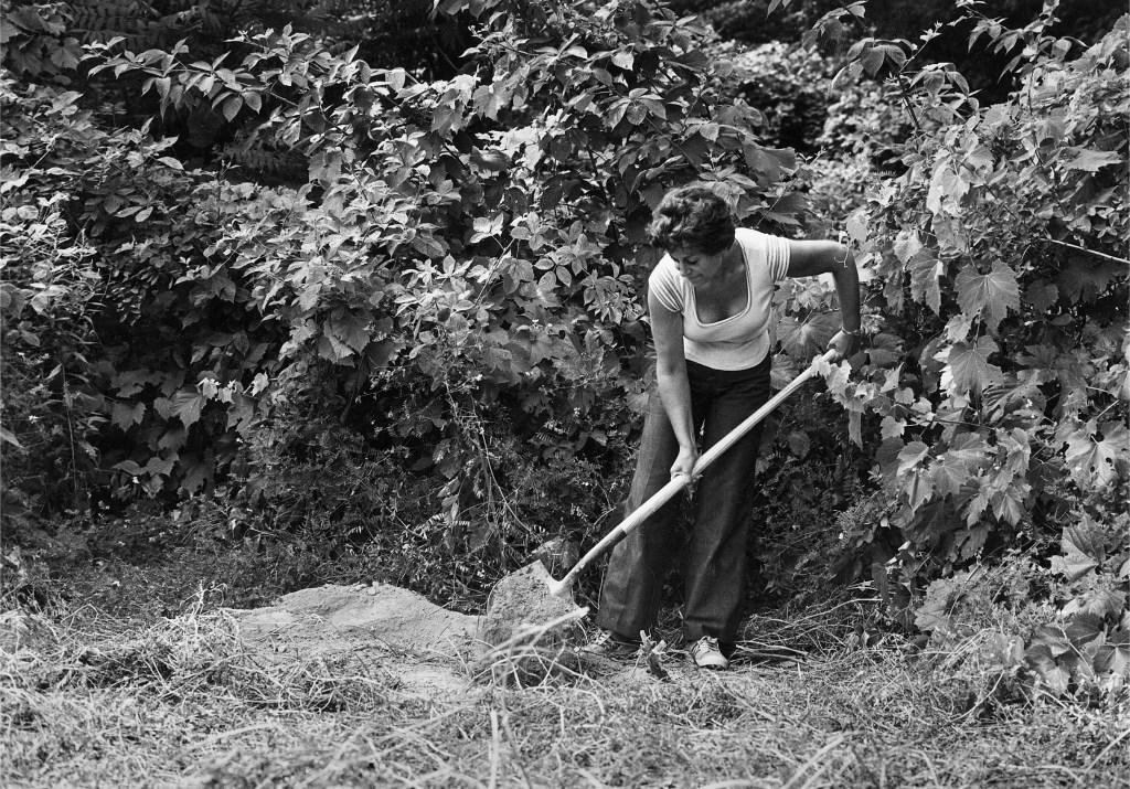 "Agnes Denes working on ""Rice/Tree/Burial"""