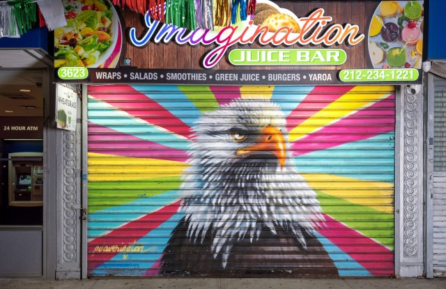The bald eagle mural, part of the Audubon Mural Project