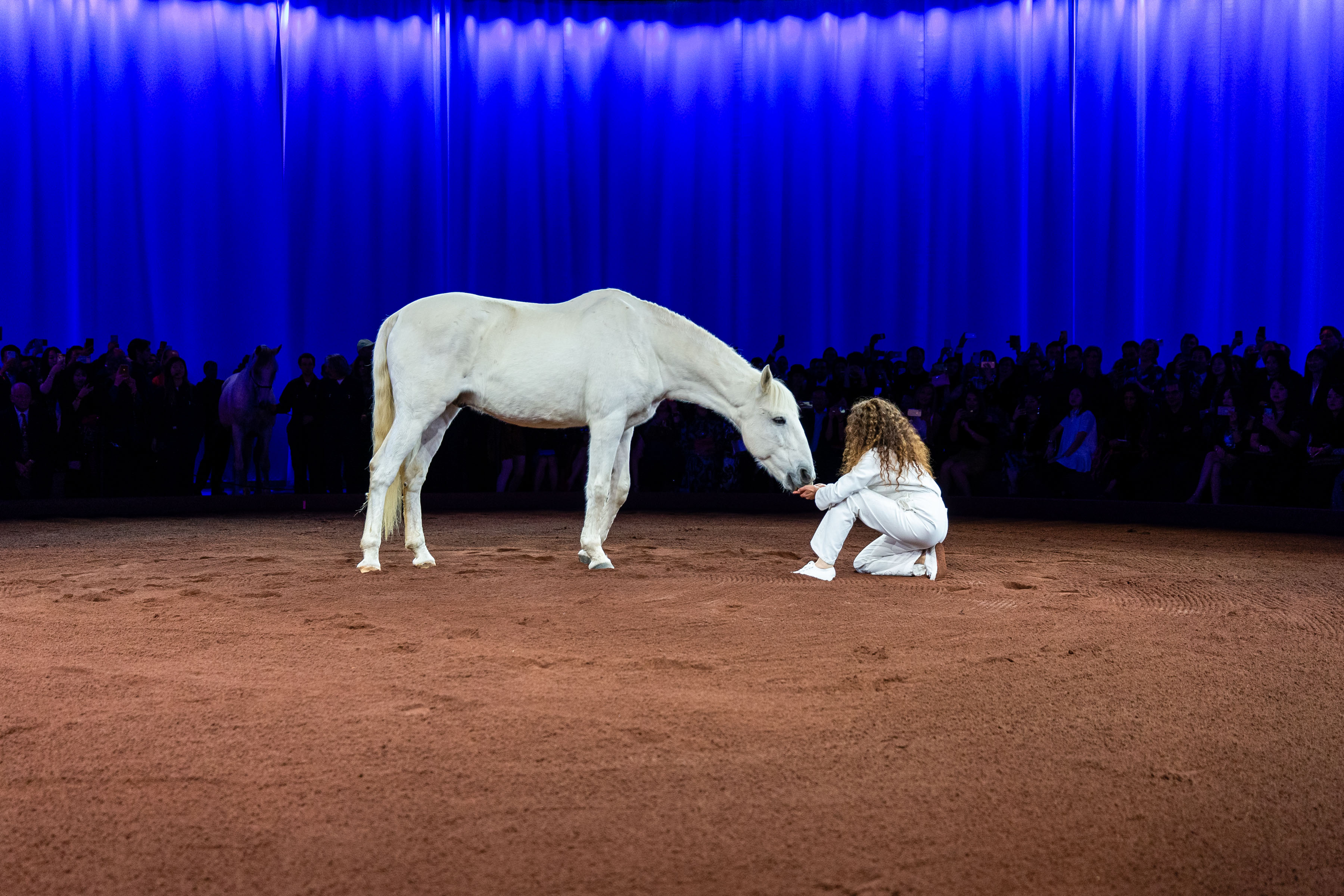 The after party featured a number of performances, including a horse ballet, in honor of the Maison's equestrian roots.