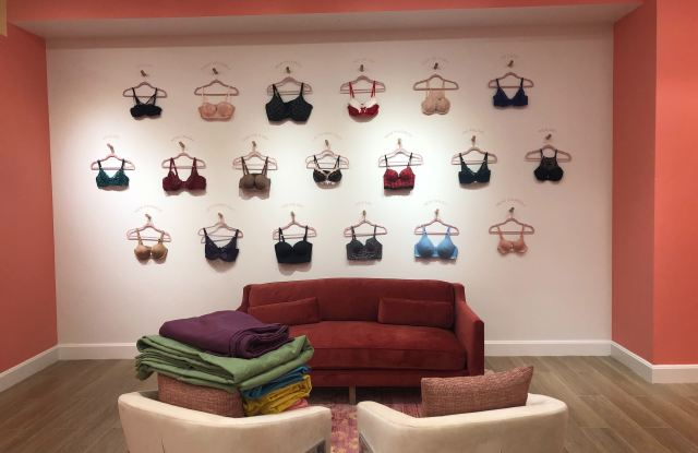 Adore Me is set to open its sixth store at the Hamilton Place Mall in Chattanooga, Tenn. —complete with body scanners in the fitting rooms.