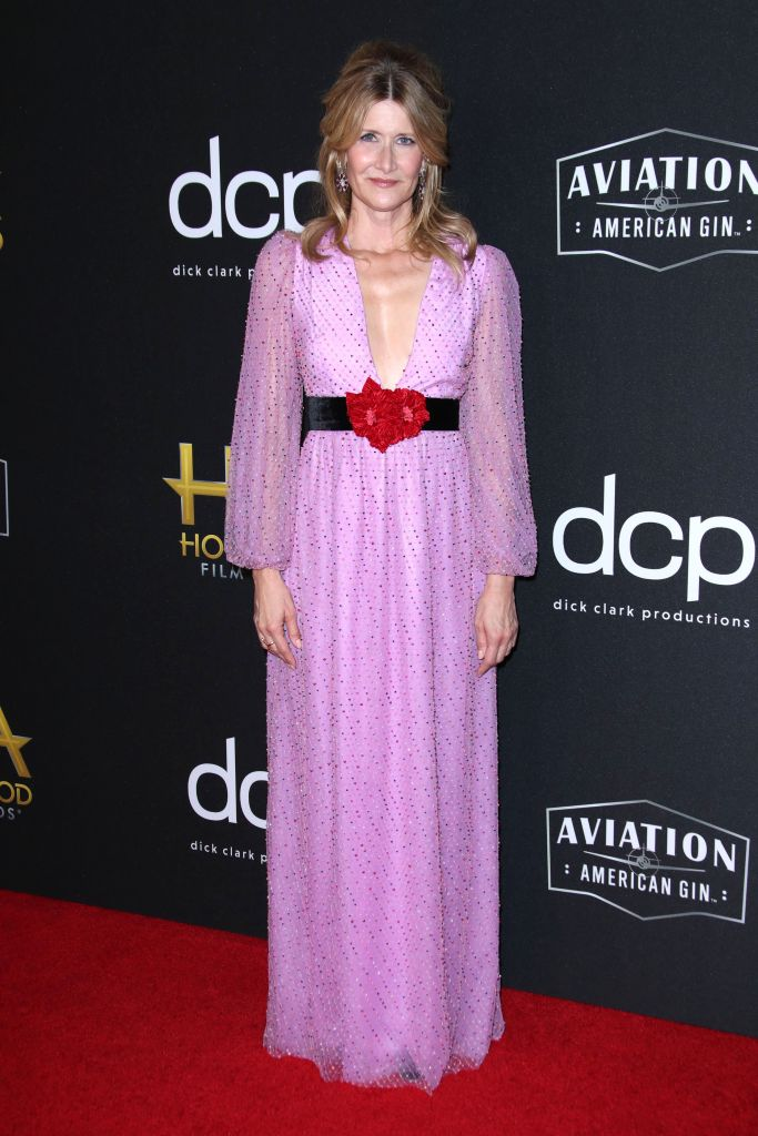 Laura Dern23rd Annual Hollywood Film Awards, Arrivals, Beverly Hilton, Los Angeles, USA - 03 Nov 2019 Wearing Markarian