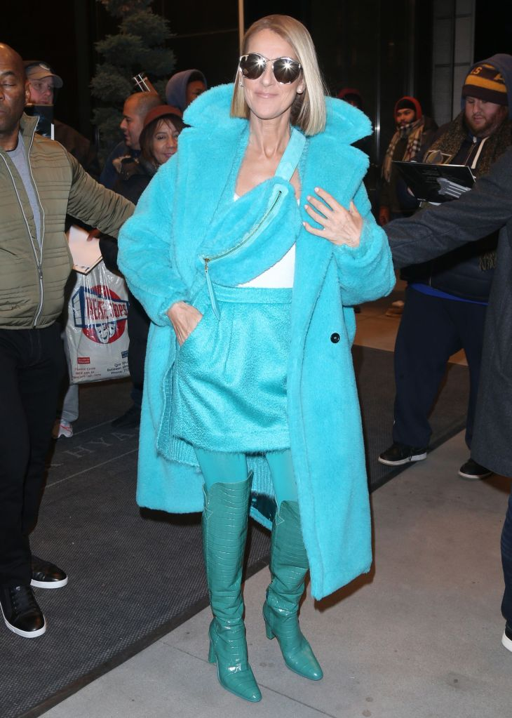 Celine DionCeline Dion out and about, New York, USA - 13 Nov 2019Wearing Max Mara Same Outfit as catwalk model *10113148bc