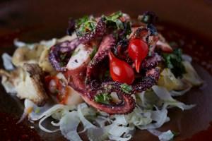 An octopus salad.
