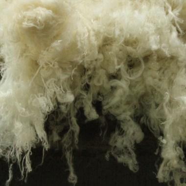 American Woolen Company
