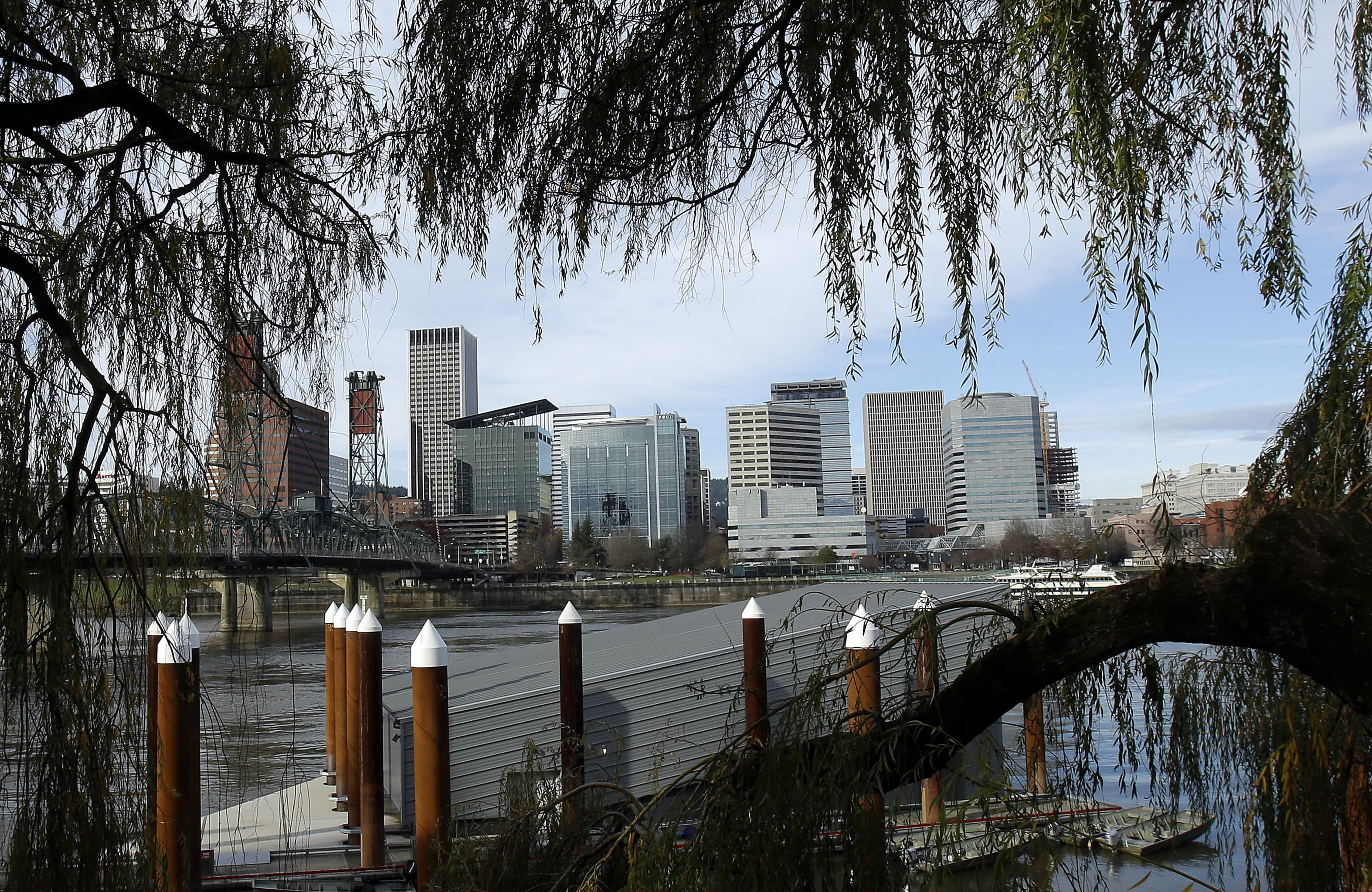 The Portland skyline is visible through trees on the east bank of the Willamette River in Portland, Ore., Wednesday, Dec. 3, 2014. The White House is singling out 16 U.S. cities, including Portland, for leading their peers in efforts to address climate change.(AP Photo/Don Ryan)