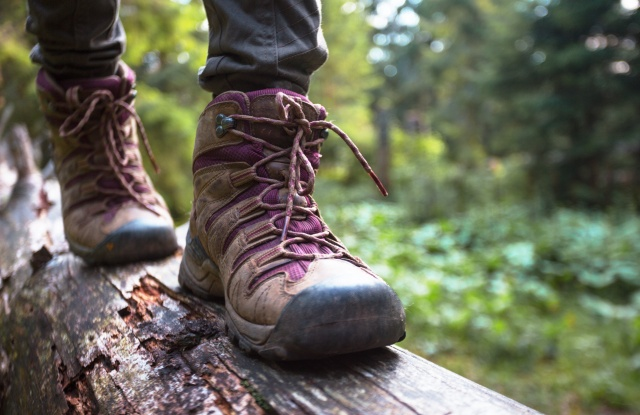 hiking boots close-up. girl tourist steps on a log
