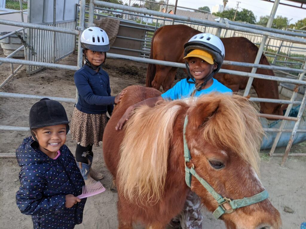 Compton Junior Equestrians.