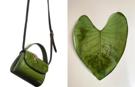Amélie Pichard's new bag and the elephant ear leaf from which it's made.