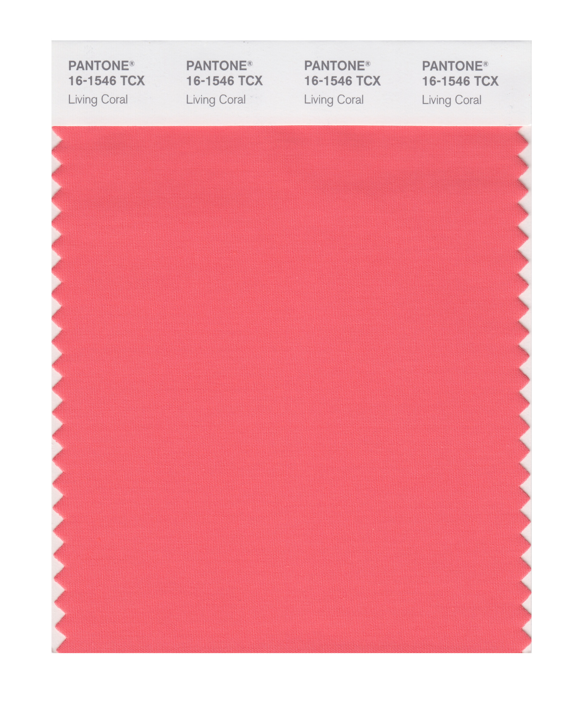 Photos of Pantone's Color of the Year Predictions Since 2000
