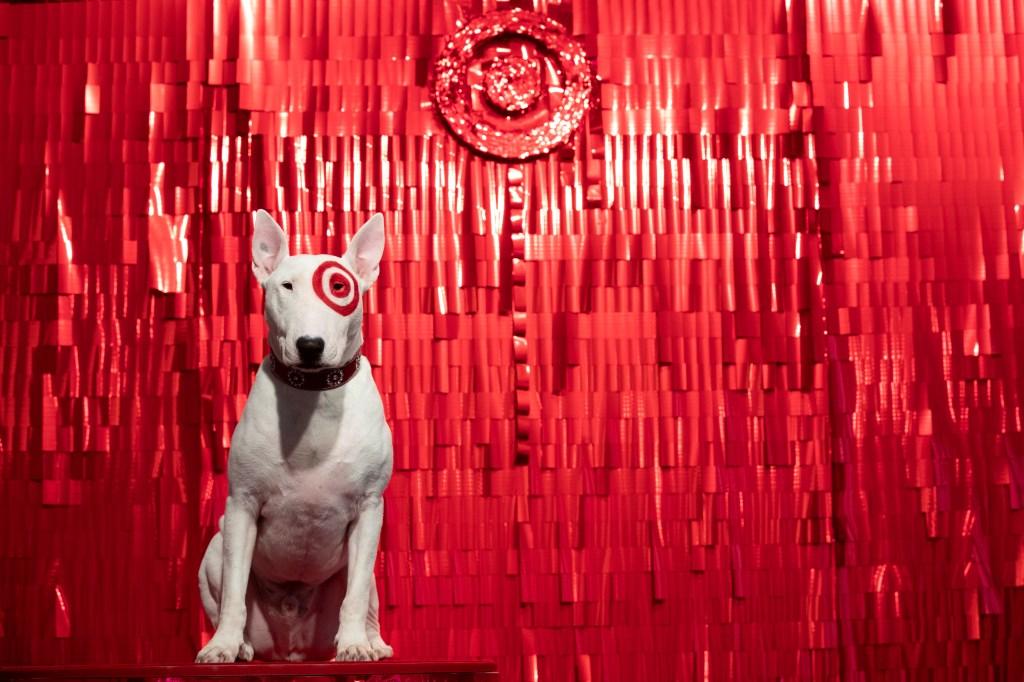 Target dog Bullseye