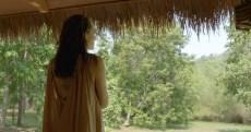 Angelina Jolie, Guerlain and UNESCO Unveil Women for Bees Program