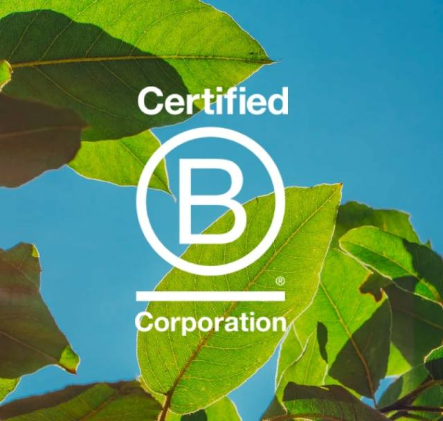 شرکت معتبر B
