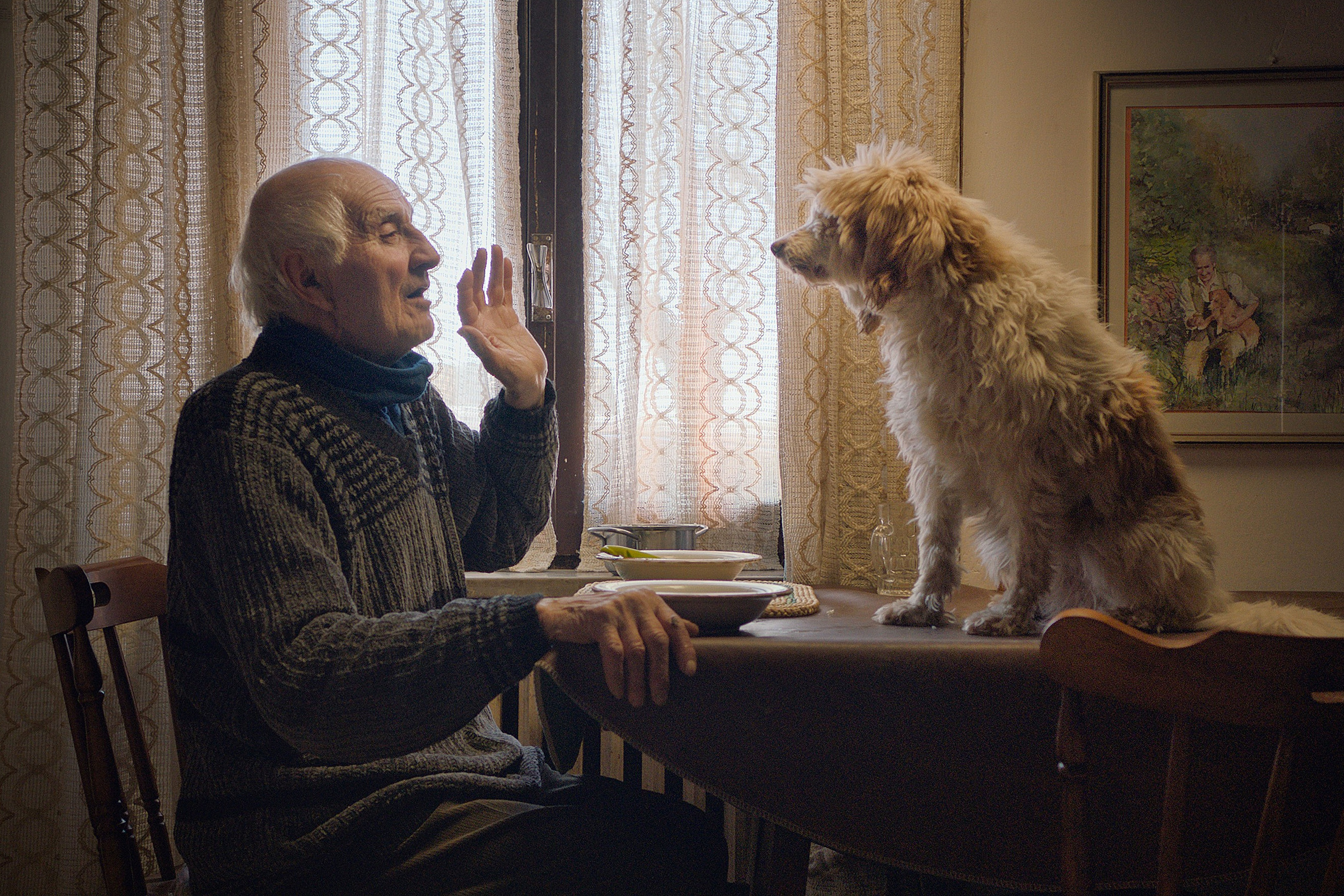 """Aurelio Conterno, Birba (dog) in """"The Truffle Hunters."""" Image by Michael Dweck and Gregory Kershaw."""