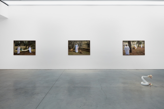 "Installation view of ""A Romance of Paradise."""