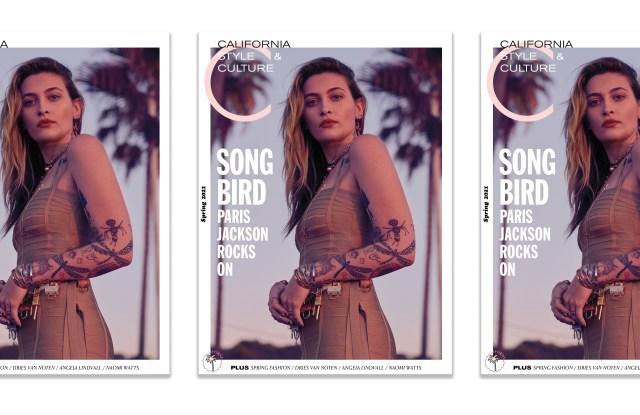 C Magazine's spring cover.