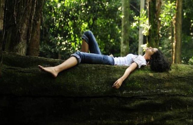 Sustainability, canopystyle, biodiversity, forests, fashion