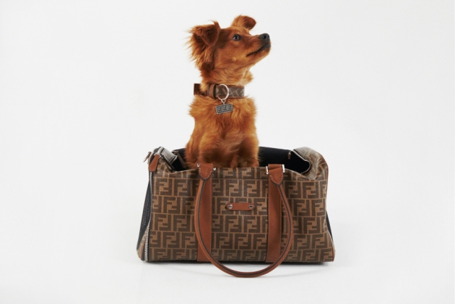 Fendi pet travel line pet carrier.