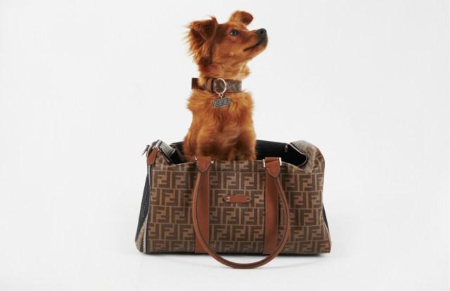 Fendi pet travel line pet carrier.