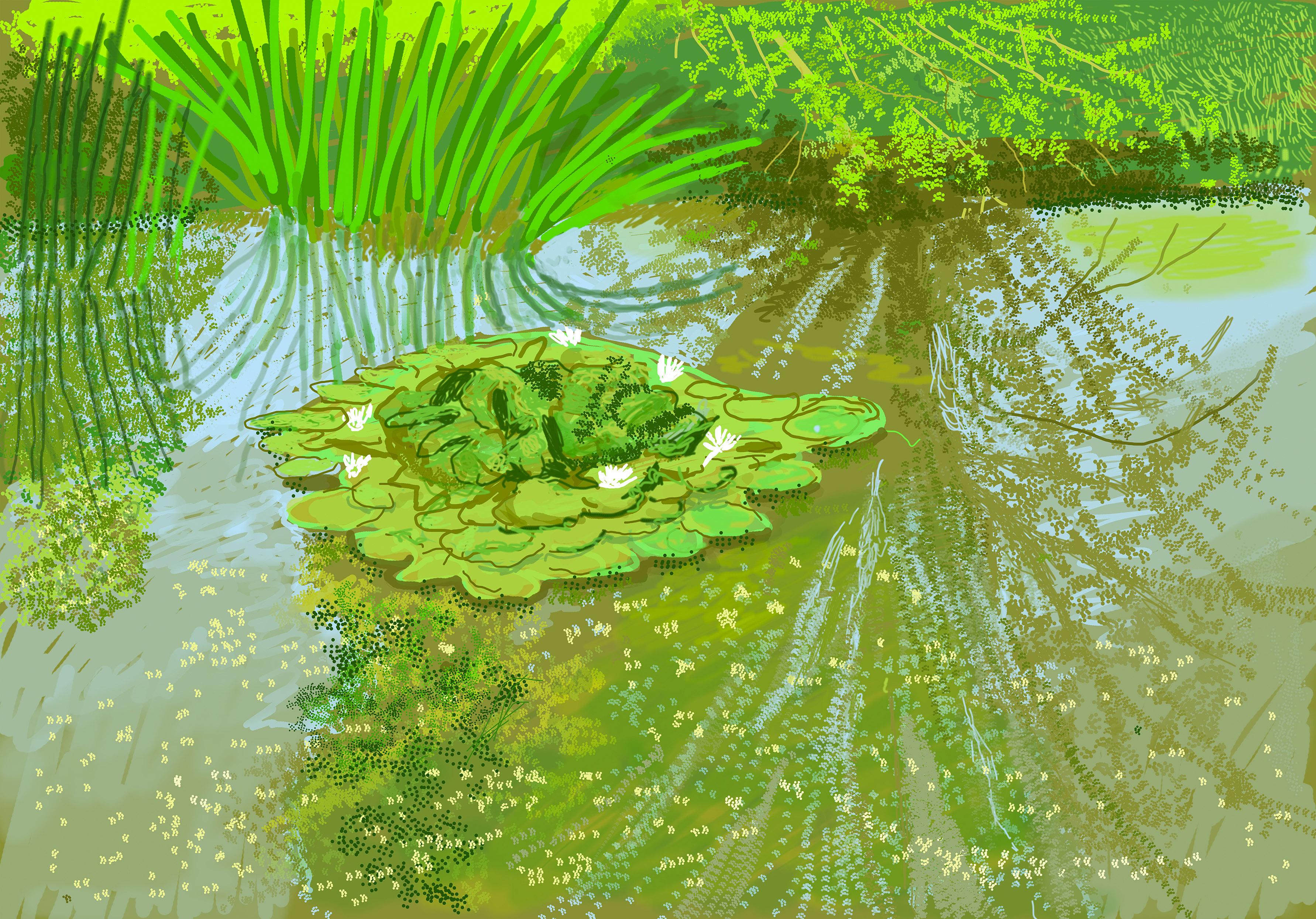 "David Hockney, ""No. 340,"" May 21, 2020, iPad painting © David Hockney"