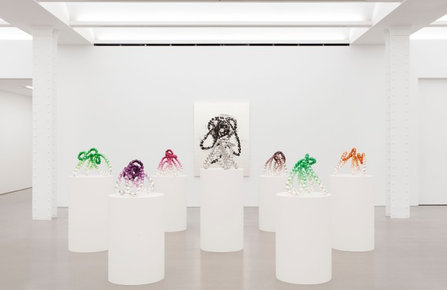 """Installation view of """"Wild Rosebuds"""" at Perrotin."""