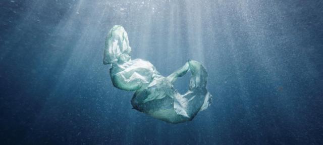 microplastics, oceans, world oceans day, plastic bottles