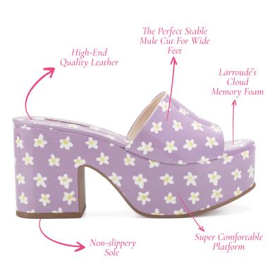 Components of a Larroudé shoe.