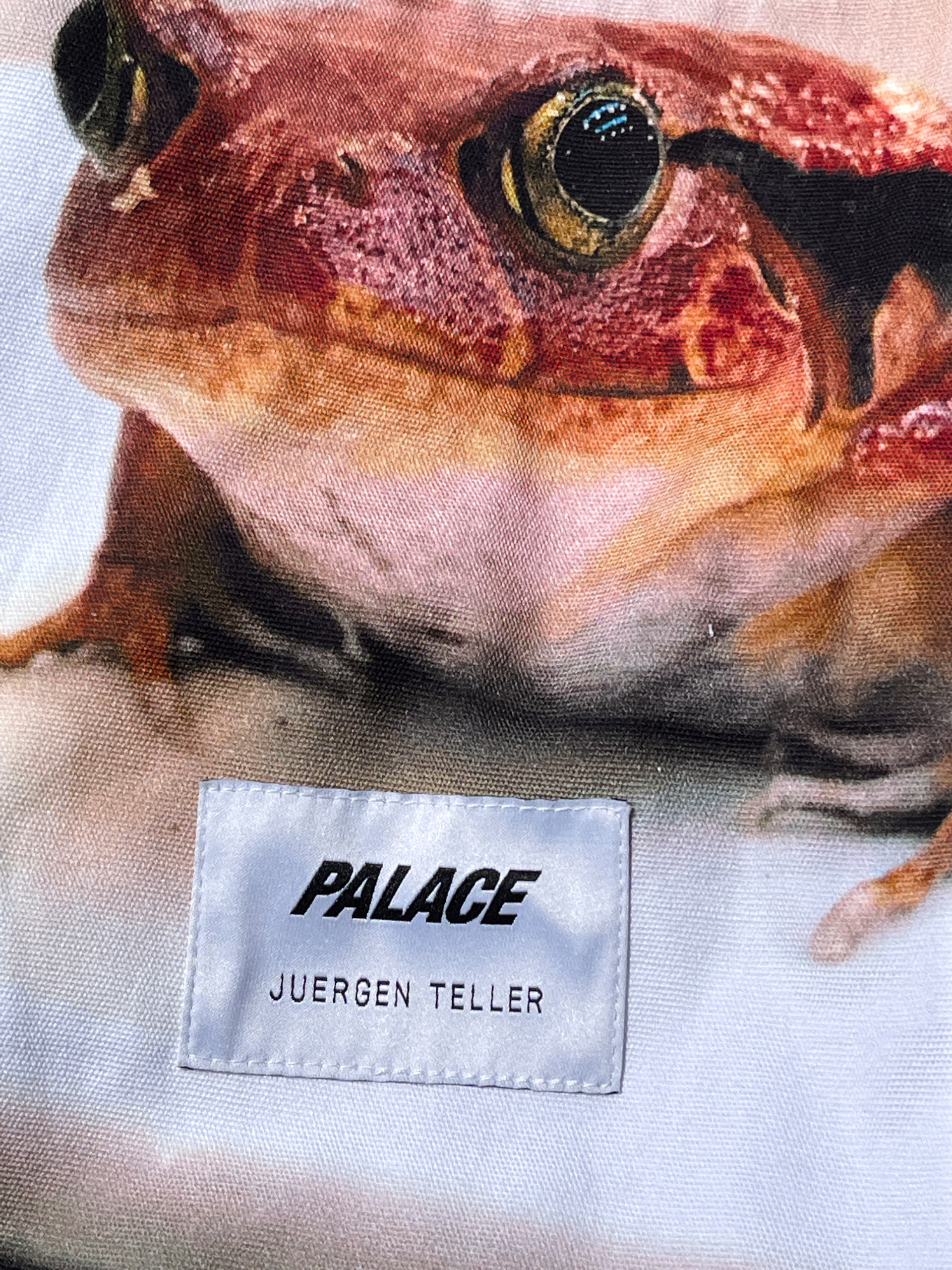 The Palace and Juergen Teller capsule collection.